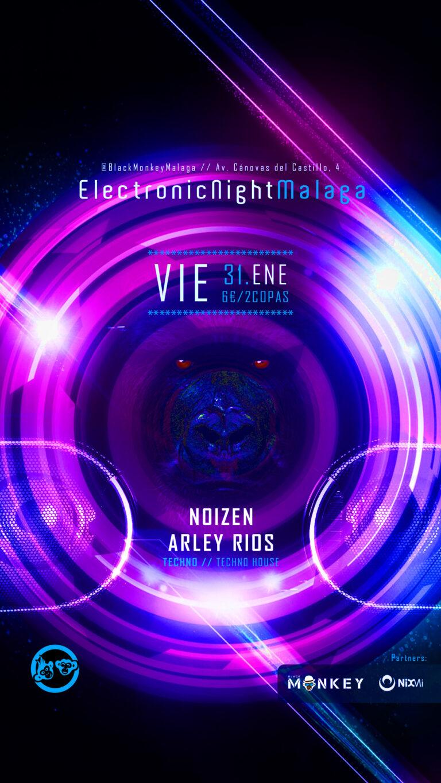 Lee más sobre el artículo Techno – 🦍 ElectronicNightMalaga // VIE.31.ENE