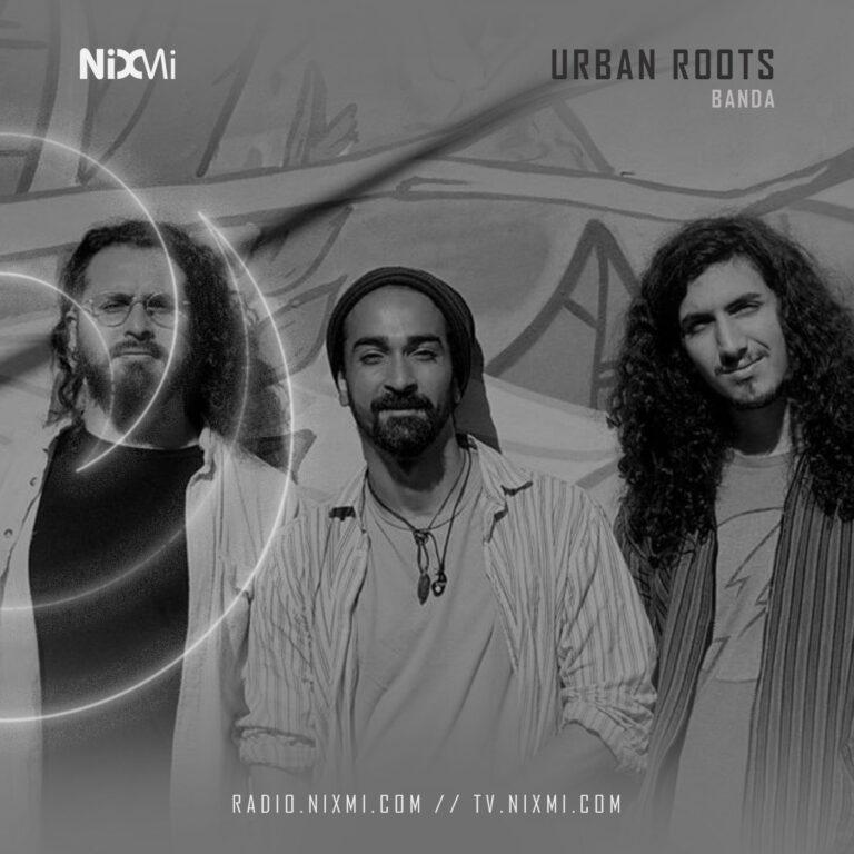 Lee más sobre el artículo Urban Roots
